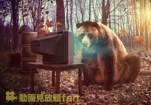 動画見たいだけ見るクマ